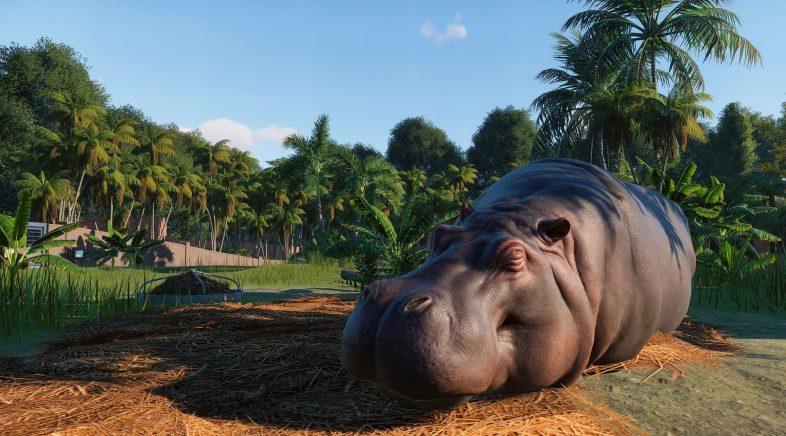 Planet Zoo, a arca de Noé    que constrúe Frontier
